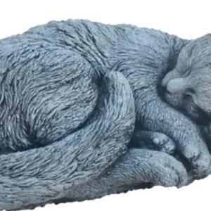Katze eingerollt grobes Fell